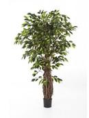 Kunstplant Ficus liana