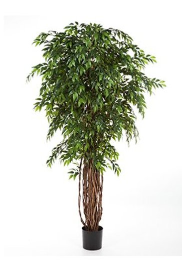 Kunstplant French ficus liana - (Zijdeplant)