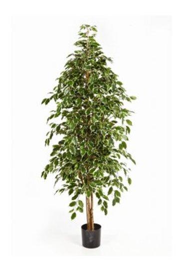 Kunstplant Natural exotica - (Zijdeplant)