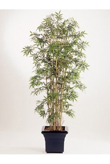 Kunstplant New japanese bamboo - (Zijdeplant)