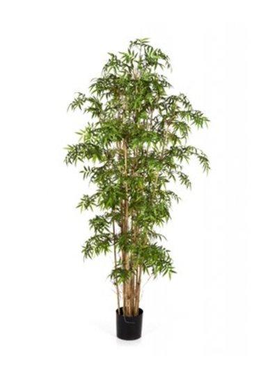 Kunstplant New japanese bamboo