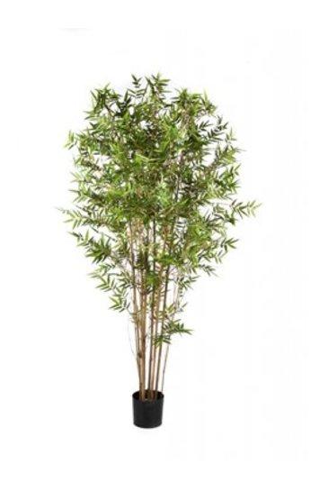 Kunstplant Japanese oriental bamboo