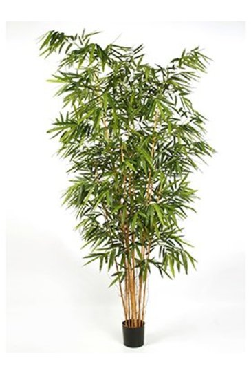 Kunstplant New bamboo big leaf