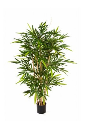 Kunstplant New bamboo - (Zijdeplant)