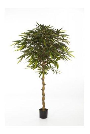 Kunstplant New bamboo umbrella