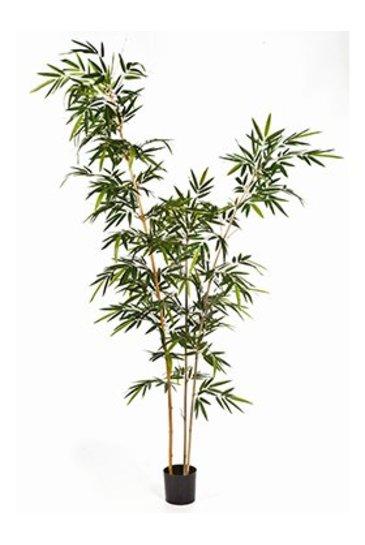 Kunstplant New bamboo elegant - (Zijdeplant)