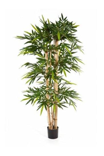 Kunstplant New giant bamboo - (Zijdeplant)