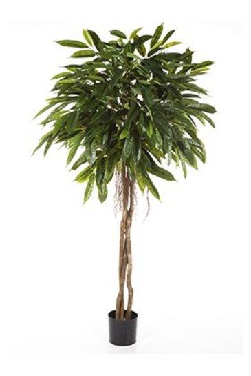 Kunstplant Longifolia umbrella fat.