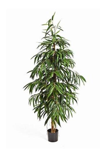 Kunstplant Longifolia