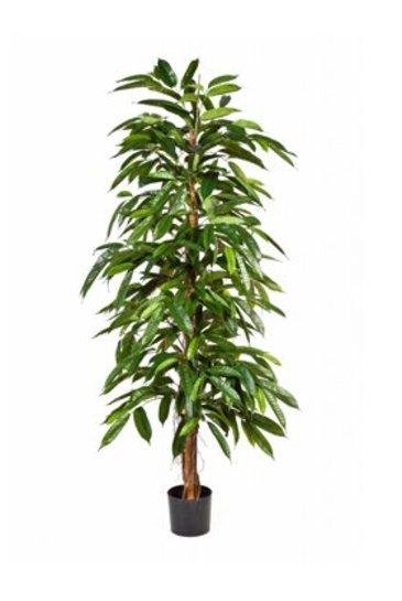 Kunstplant Longifolia vat.