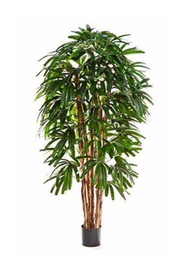 Kunstplant Rhapis palm - (Zijdeplant)