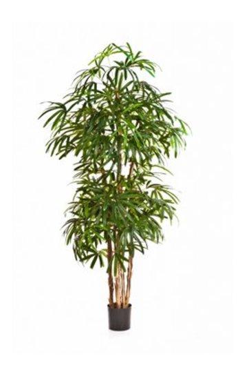 Kunstplant Natural rhapis palm - (Zijdeplant)