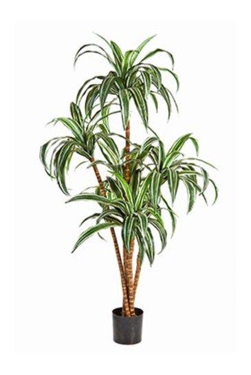 Kunstplant Dracaena