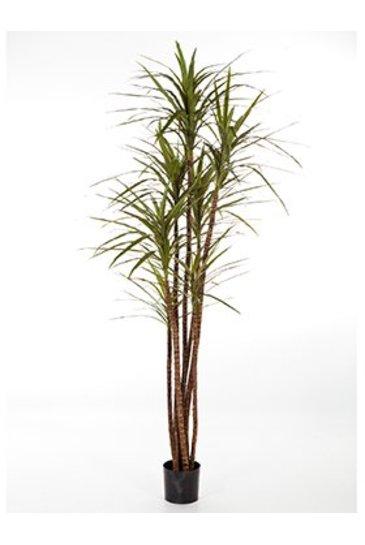 Kunstplant Dracaena magenta