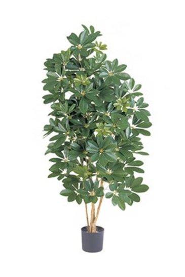 Kunstplant Natural schefflera