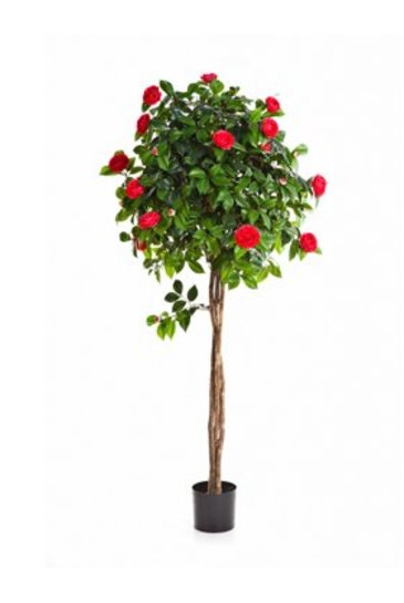 Kunstplant New camelia umbrella