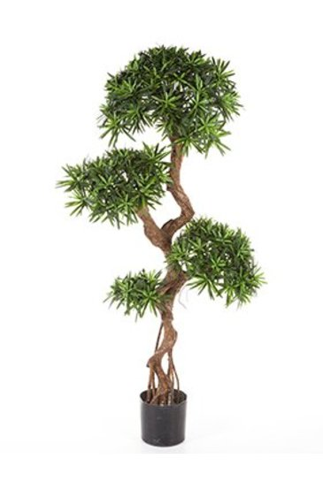 Kunstplant Podocarpus - (Zijdeplant)