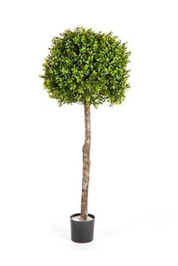 Kunstplant Boxwood ball - (Zijdeplant)