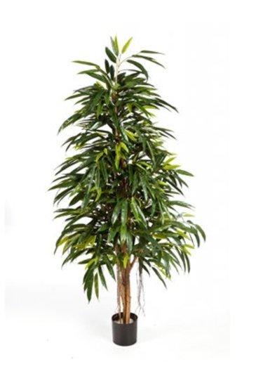 Kunstplant Longifolia royal natural - (Zijdeplant)