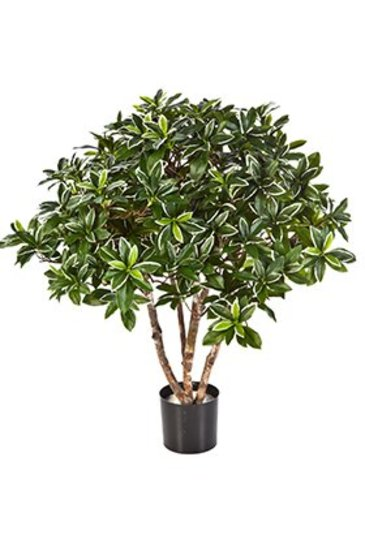 Kunstplant Euonymus japonicus