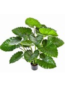 Kunstplant Alocasia calidora
