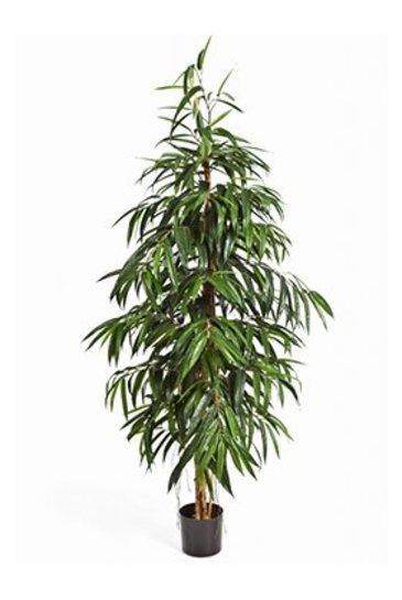 Kunstplant Longifolia tree