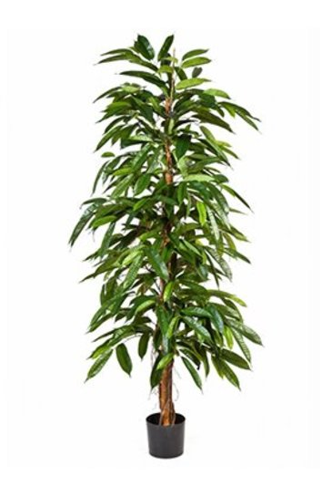 Kunstplant Fat longifolia tree