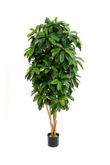 Kunstplant Lady schefflera tree - (Zijdeplant)