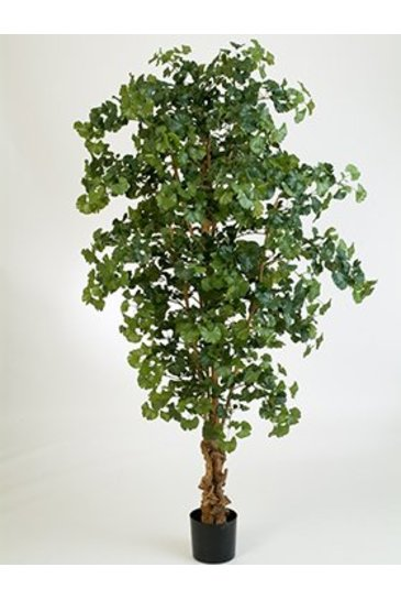 Kunstplant Gingko biloba - (Zijdeplant)