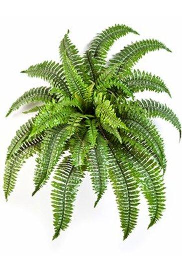 Kunstplant Nephrolepis boston - (Zijdeplant)