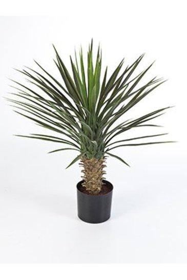 Kunstplant Yucca rostrata - (Zijdeplant)