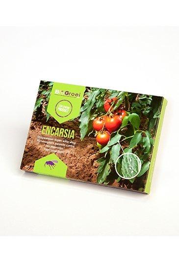 BioGroei Encarsia Biologische bestrijding