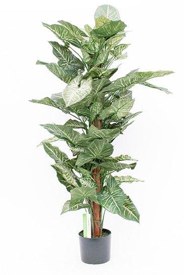 Kunstplant Nepthytis