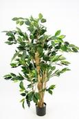 Kunstplant Ficus nitida