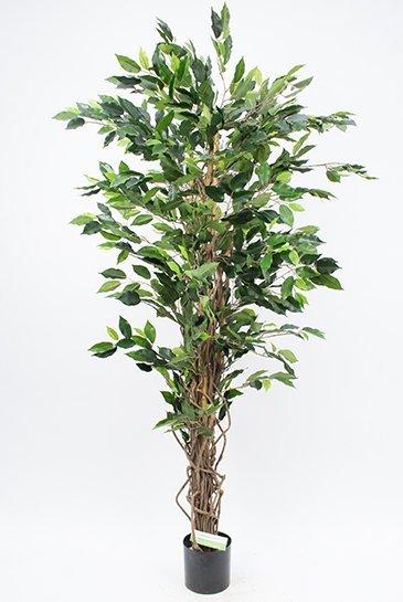 Kunstplant Ficus liana - (Zijdeplant)