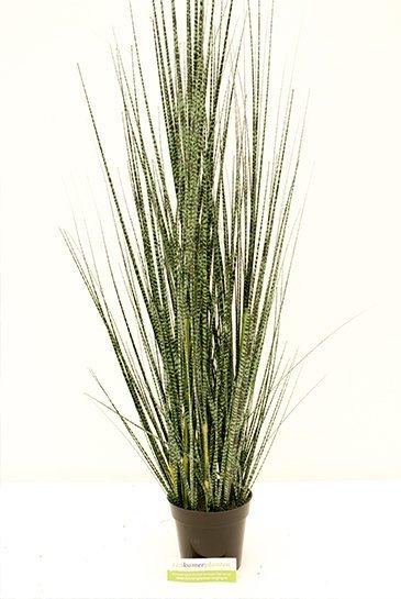 Kunstplant Zebra gracilis grass - (Zijdeplant)