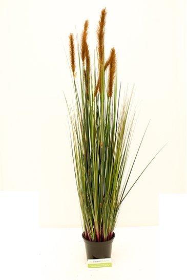 Kunstplant Kunstgras Bruin - (Zijdeplant)