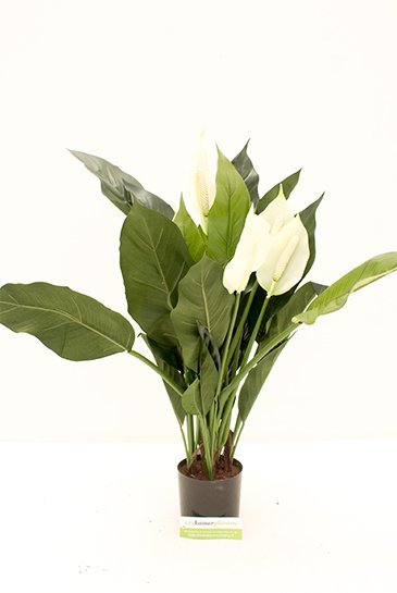 Kunstbloem Spathiphyllum