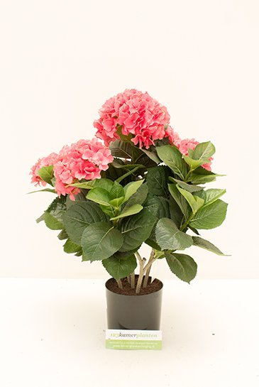 Kunstplant Hydrangea pot - (Zijdeplant)