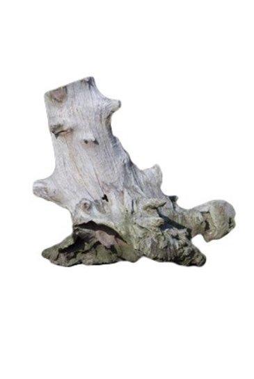 Decowood Asian rootwood middel (Medium)