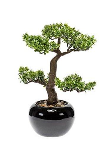 Kunstplant Bonsai Pilea  - Zijdeplant
