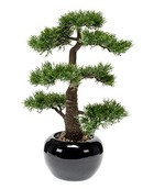 Kunstplant Bonsai Cedar