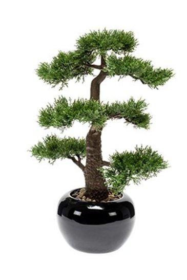 Kunstplant Bonsai Cedar  - Zijdeplant