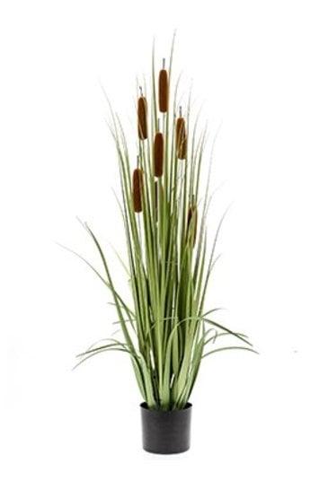 Kunstplant Grass cattail  - Zijdeplant
