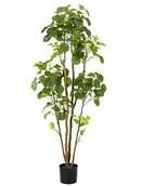 Kunstplant Polyscias Tree  (279 bladeren)