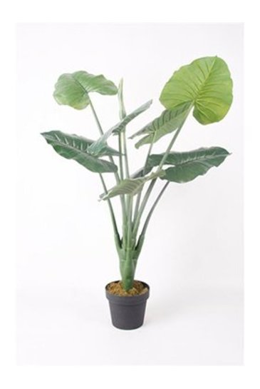 Kunstplant Alocasisa Green  - Zijdeplant