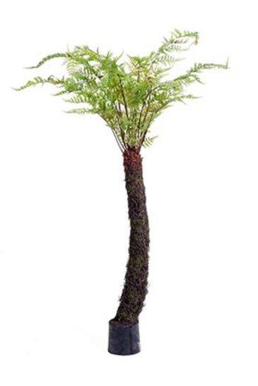 Kunstplant Forest fern Tree  - Zijdeplant