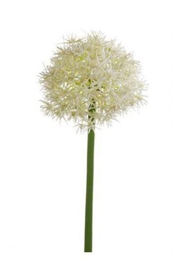 Kunstplant Allium Stem white - Zijdeplant