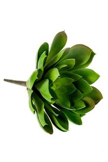 Kunstplant Echeveria mira Bush  green - Zijdeplant