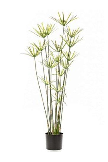 Kunstplant Cyperus Green  - Zijdeplant